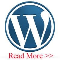 Cara Menambah Read More pada WordPress